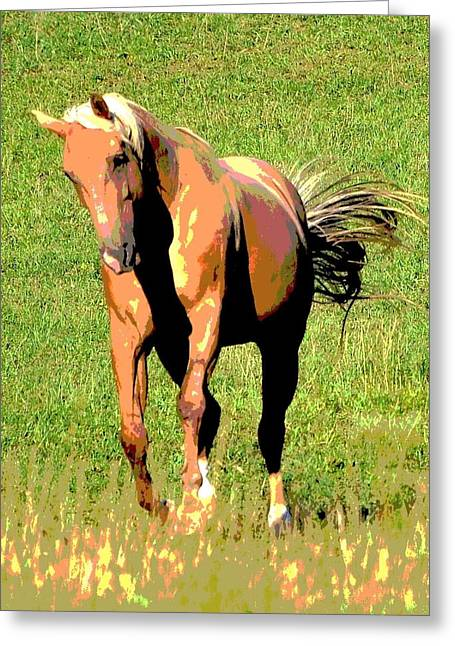 Quarter Horse Mixed Media Greeting Cards - Palomino Greeting Card by Dorrie Pelzer