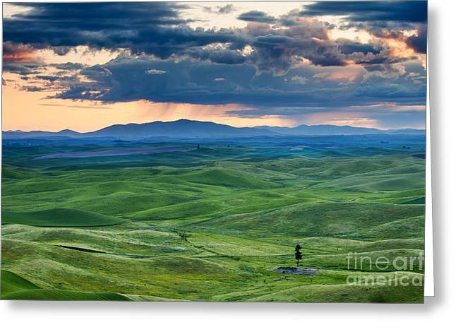 Green Hills Greeting Cards - Palouse Storm Greeting Card by Mike  Dawson