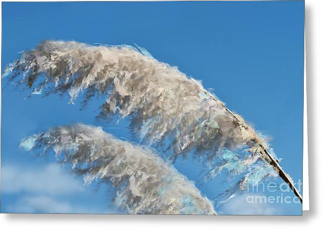 Pampas Grass Greeting Cards - Pampas Grass Abstract Greeting Card by Betty LaRue