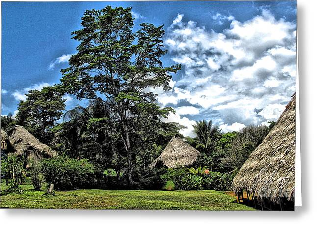 Next To Tree Greeting Cards - Panama Indian Village Greeting Card by Phyllis Kaltenbach