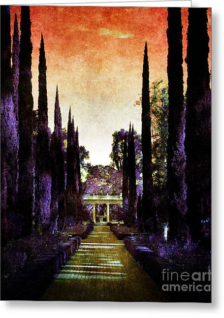 Cypress Trees Greeting Cards - Pans Twilight Greeting Card by Laura Iverson