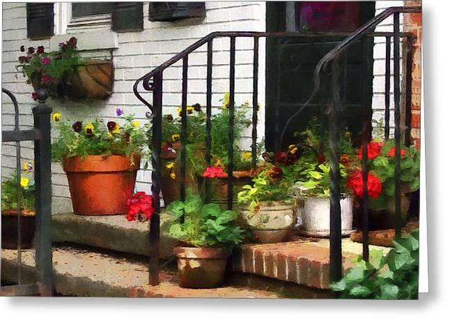 Pansies Greeting Cards - Pansies and Geraniums on Stoop Greeting Card by Susan Savad