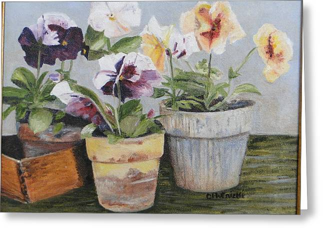 Cindy Plutnicki Greeting Cards - Pansies Greeting Card by Cindy Plutnicki