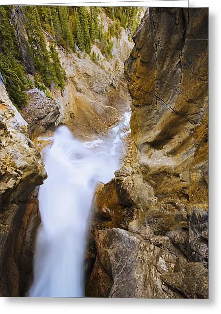 Alberta Water Falls Greeting Cards - Panther Falls, Banff National Park Greeting Card by Yves Marcoux