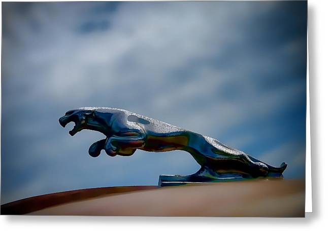 Vintage Hood Ornaments Digital Art Greeting Cards - Panther Hoodie Greeting Card by Douglas Pittman
