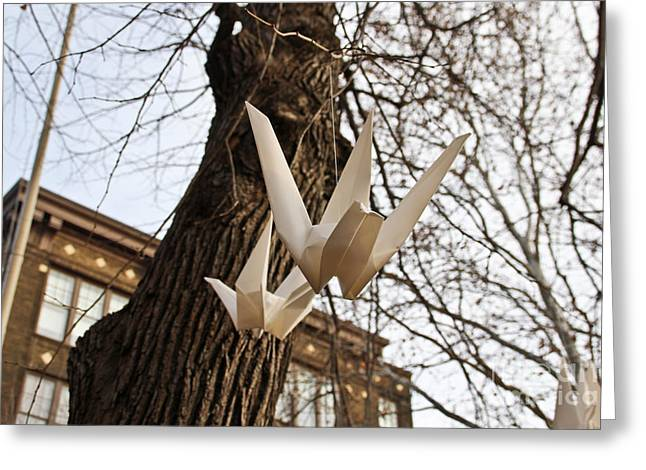 City Art Greeting Cards - Paper Cranes Greeting Card by Extrospection Art