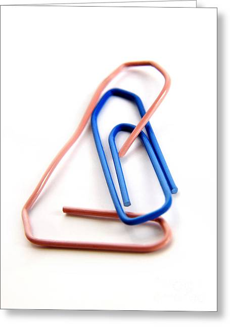 Clip Greeting Cards - Paperclips Greeting Card by Bernard Jaubert