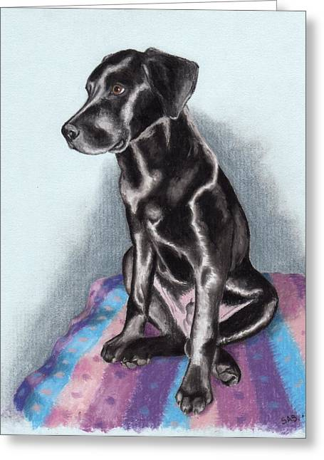 Papi The Labby Greeting Card by Sherri Strikwerda