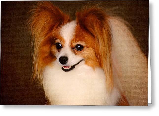 Dog Photographs Greeting Cards - Papillon Greeting Card by Jai Johnson