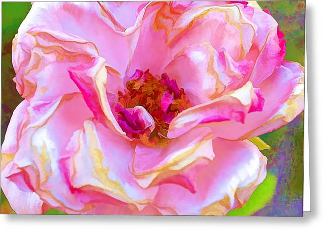 Altered Photograph Greeting Cards - Pappys Pink Rose Greeting Card by Danielle Miller