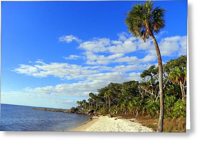Paradise 1 Greeting Card by Sheri McLeroy
