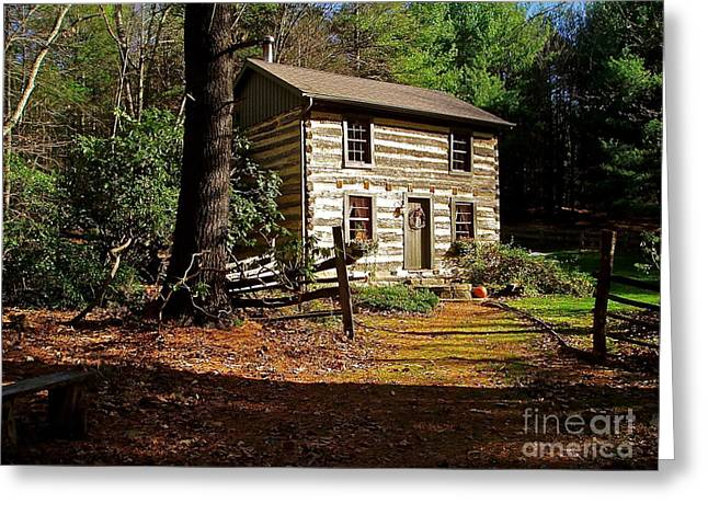 Mountain Cabin Greeting Cards - Paradise Greeting Card by E Robert Dee