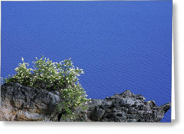 Purity Greeting Cards - Paradise for Backpackers - Crater Lake in Crater National Park - Oregon Greeting Card by Christine Till
