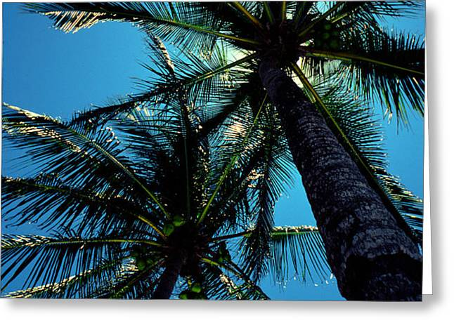 Paradise Island Greeting Card by Mike Flynn