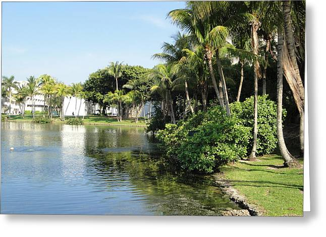 University Of Miami Greeting Cards - Paradise Greeting Card by Teff