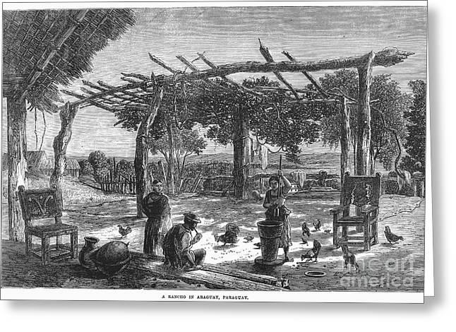Paraguay Greeting Cards - Paraguya: Rancho, 1865 Greeting Card by Granger