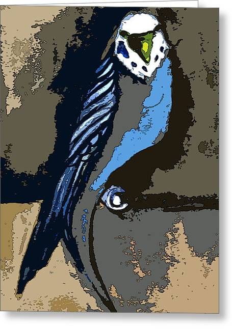Pet Drawing Greeting Cards - Paraket Blue Greeting Card by Mindy Newman