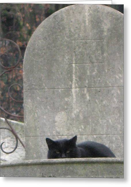 Cemeteries Of Paris Greeting Cards - Paris Cemetery - Pere La Chaise - Black Cat On Gravestone Greeting Card by Kathy Fornal