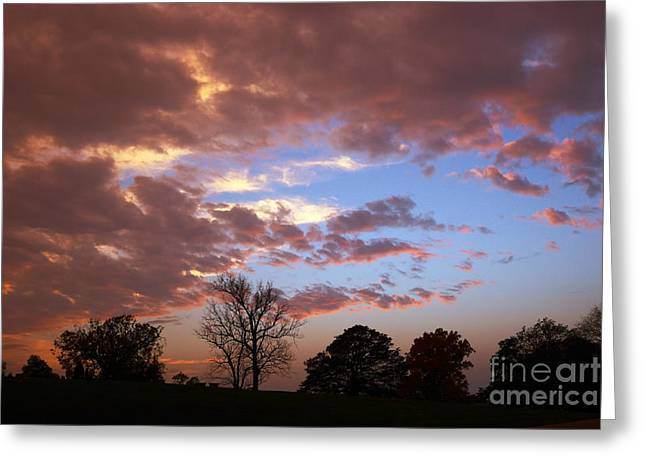 Silhouette Of Tree Greeting Cards - Park at Sunset Greeting Card by Susan Isakson