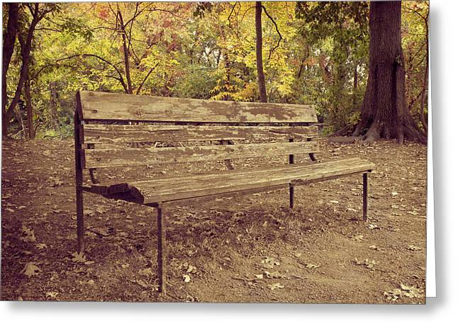 Park Benches Greeting Cards - Park Bench Greeting Card by Steven  Michael