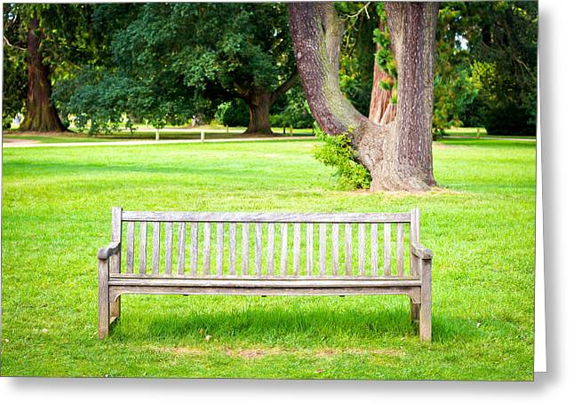 Unused Photographs Greeting Cards - Park bench Greeting Card by Tom Gowanlock