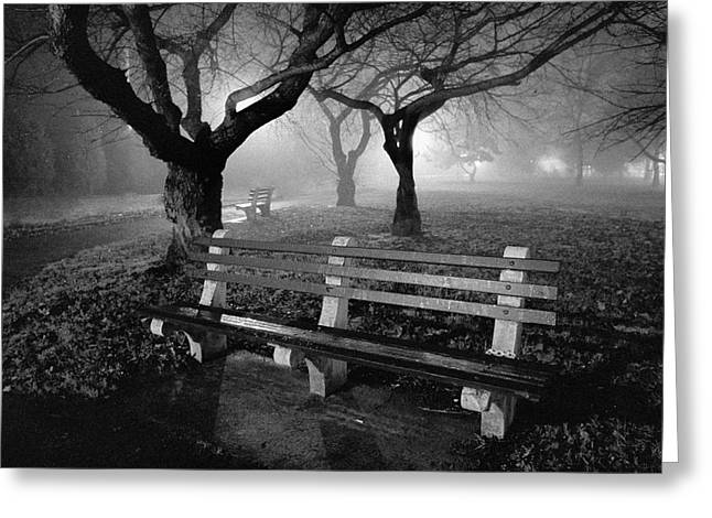 Night Scene Prints Greeting Cards - Park Benches Greeting Card by Gary Heller