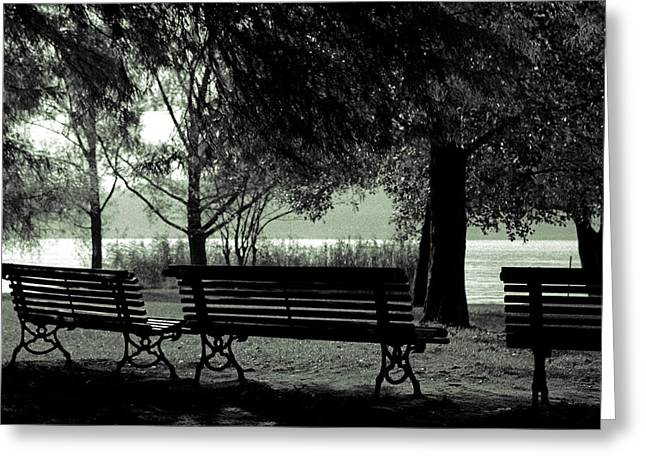 Duster Greeting Cards - Park Benches In Autumn Greeting Card by Joana Kruse