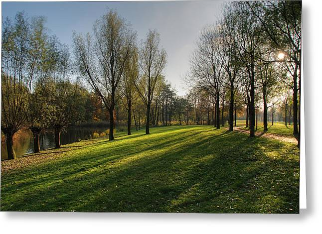 Herfst Greeting Cards - Park in autumn sunshine Greeting Card by Jan Giesen