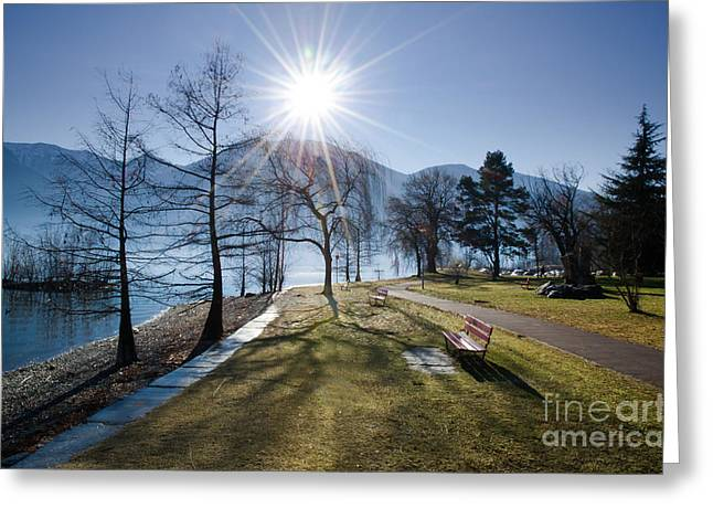 Park Benches Greeting Cards - Park on the lakefront Greeting Card by Mats Silvan