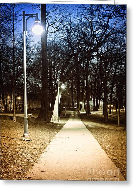 Lighted Pathway Greeting Cards - Park path at night Greeting Card by Elena Elisseeva