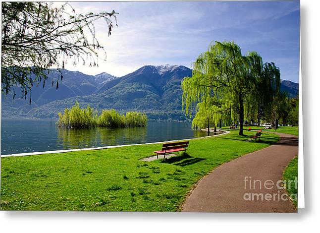 Park Benches Greeting Cards - Park with lake and mountain Greeting Card by Mats Silvan