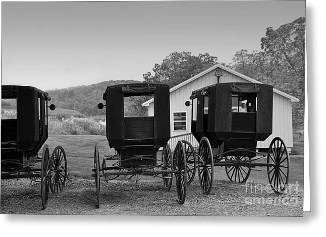 Amish Greeting Cards - Parked Buggies Greeting Card by Fred Lassmann