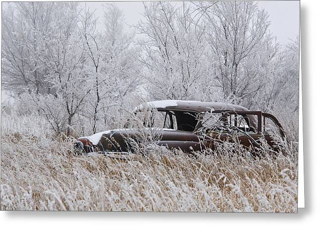 Cars In Winter Greeting Cards - Parked Greeting Card by Don Durfee