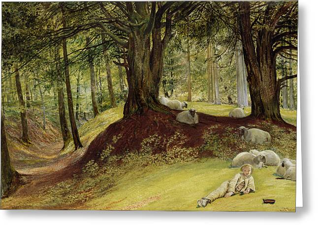 Woodland Scenes Paintings Greeting Cards - Parkhurst Woods Greeting Card by Richard Redgrave