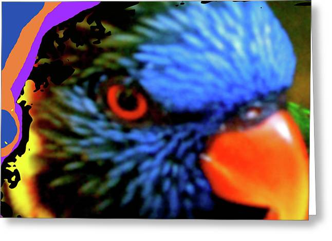 Flocks Of Birds Mixed Media Greeting Cards - Parrot Colors Greeting Card by Debra     Vatalaro