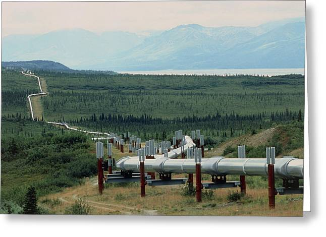 Fossil Fuel Greeting Cards - Part Of The Trans-alaskan Oil Pipeline Greeting Card by Pekka Parviainen