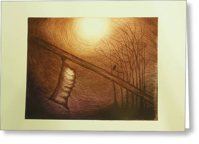 Cocoon Drawings Greeting Cards - Passage to Pupate II Greeting Card by Beth Dennis