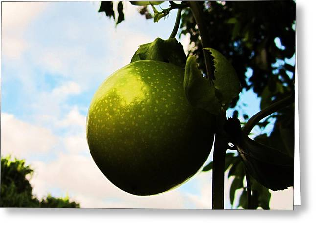 Passionfruit Greeting Cards - Passion Greeting Card by Charles  Jennison