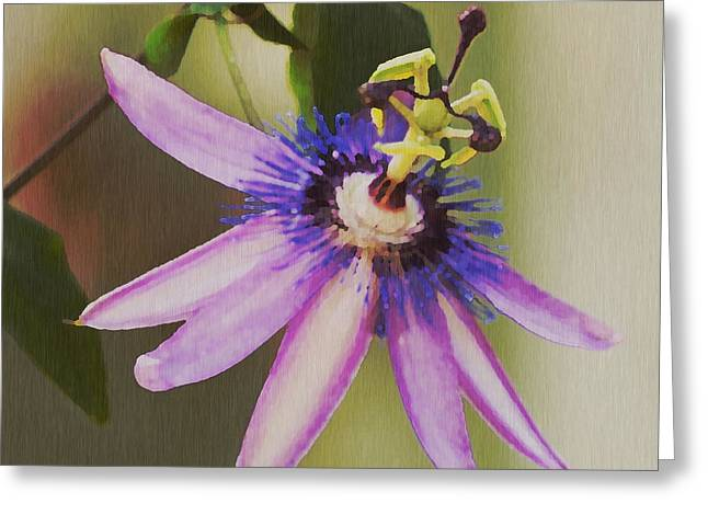 Vines Greeting Cards - Passion Flower Greeting Card by Artist and Photographer Laura Wrede