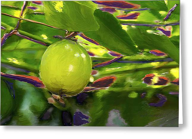 Passion Fruit Paintings Greeting Cards - Passion Fruit Greeting Card by Miguel Pumarejo