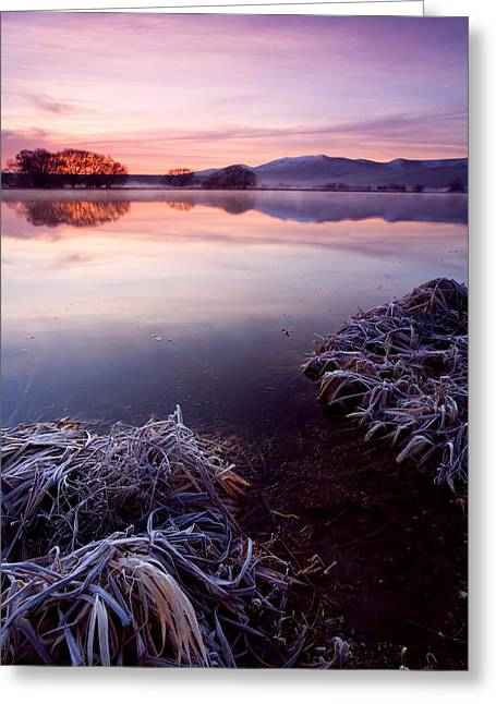 Lake County Greeting Cards - Pastel Dawn Greeting Card by Mike  Dawson