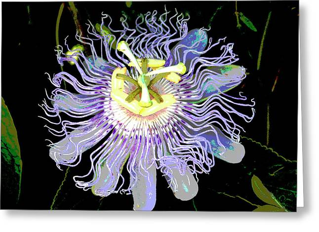 Passion Fruit Greeting Cards - Pastel Passion Greeting Card by Leo Miranda