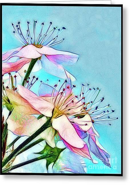Judi Bagwell Greeting Cards - Pastel Petals Greeting Card by Judi Bagwell