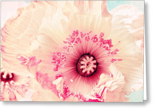 Close Up Floral Mixed Media Greeting Cards - Pastell poppy Greeting Card by Angela Doelling AD DESIGN Photo and PhotoArt
