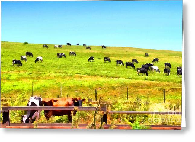 Backroads Digital Greeting Cards - Pastoral Landscape . 7D16962 Greeting Card by Wingsdomain Art and Photography