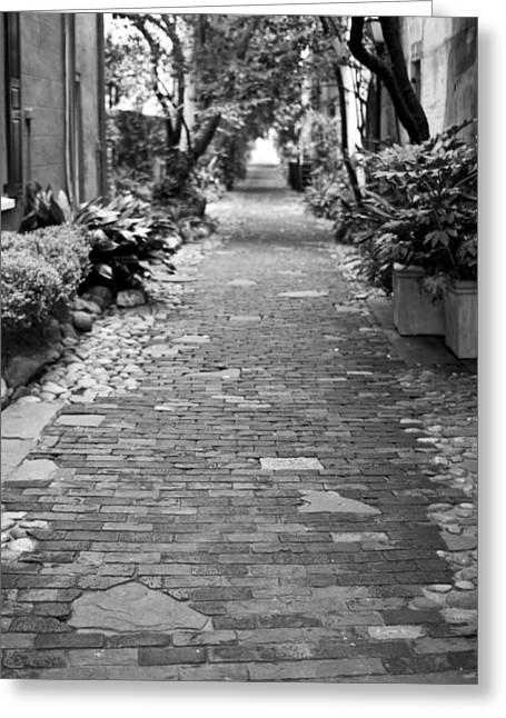 Charleston Pathway Greeting Cards - Patchwork Pathway Greeting Card by Dustin K Ryan