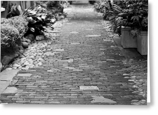 Patchwork Pathway Greeting Card by Dustin K Ryan