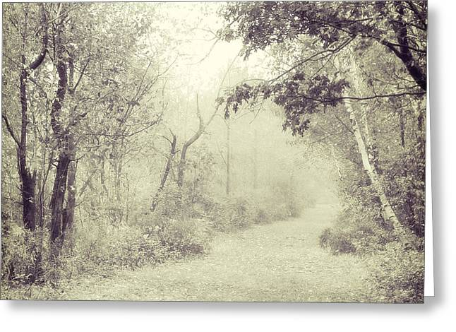 Path Greeting Cards - Path Greeting Card by HD Connelly