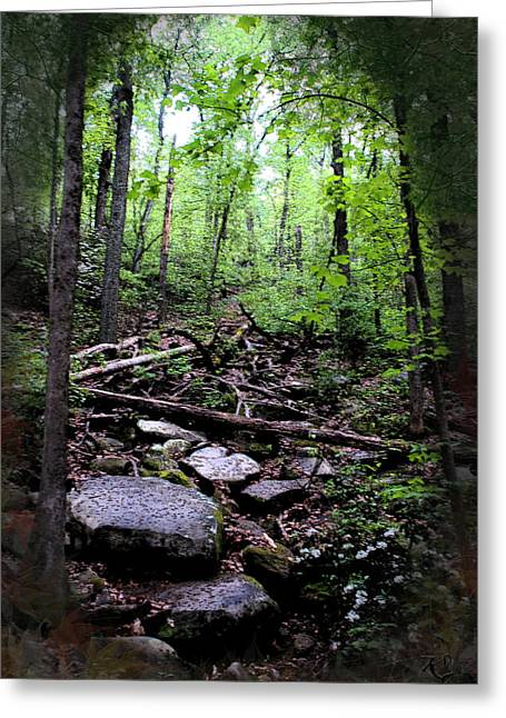 Kelly Digital Art Greeting Cards - Path In Stone Greeting Card by Kelly Rader