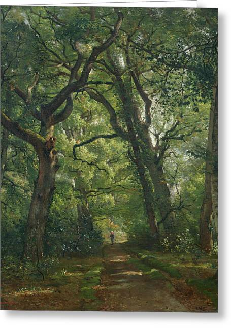 Constant Greeting Cards - Path in the Forest Greeting Card by Henri Joseph Constant Dutilleux